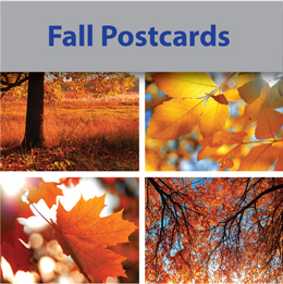 Fall Postcards